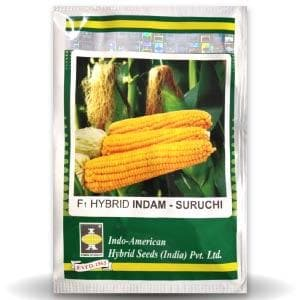 SURUCHI SWEET CORN - BigHaat.com