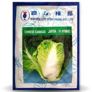 JAYA CABBAGE - BigHaat.com