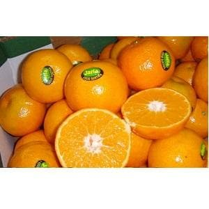 JAFFA CITRUS SAPLINGS - BigHaat.com