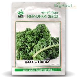 NS 1474 KALE CURLY - BigHaat.com