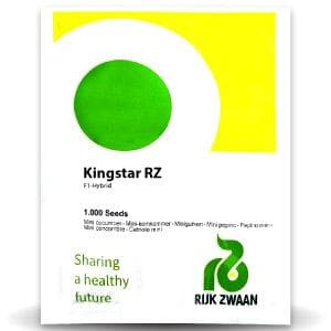 KINGSTAR RZ F1 CUCUMBER - BigHaat.com