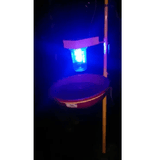 SOLAR LIGHT TRAP
