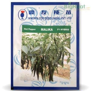 MALIKA CHILLI - BigHaat.com