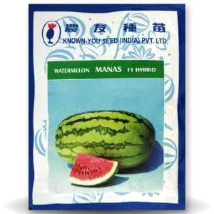 MANAS WATERMELON