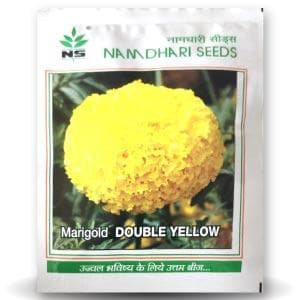 AFRICAN DOUBLE YELLOW MARIGOLD SEEDS - BigHaat.com