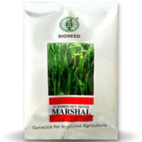 MARSHAL CHILLI - BigHaat.com