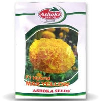 MAX YELLOW MARIGOLD - BigHaat.com