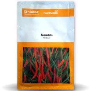 NANDITHA CHILLI - BigHaat.com