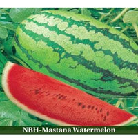WATER MELON - BigHaat.com
