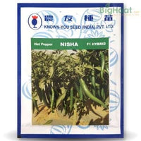 NISHA CHILLI - BigHaat.com