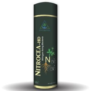 NITROCEA - HD (NITROGEN FIXING BACTERIAL BIO-FERTILIZER)