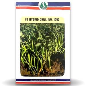 NO. 1050 CHILLI - BigHaat.com