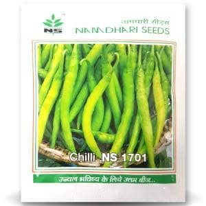 NS 1701 CHILLI (LG) - BigHaat.com