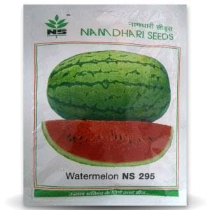 NS 295 WATERMELON - BigHaat.com