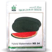 NS 34 WATERMELON - BigHaat.com