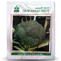 NS 50 BROCCOLI - BigHaat.com