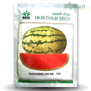 NS 750 WATERMELON