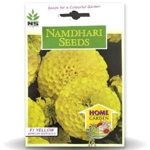 NS AFRICAN MARIGOLD MAJESTIC YELLOW - BigHaat.com