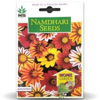 NS GAZANIA F1 KISS FROSTY MIX - BigHaat.com