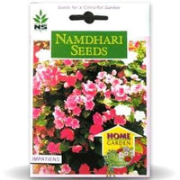 NS IMPATIENS F2 MIX FLOWER - BigHaat.com