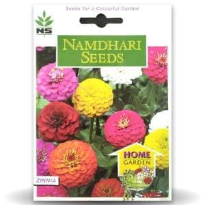 NS ZINNIA SUPER YOGA MIX - BigHaat.com
