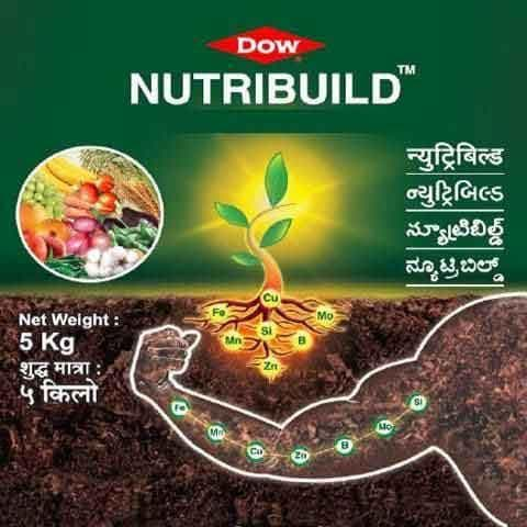 DOW NUTRIBUILD Mix EDTA 12% ( Chelate) - 250 gms - BigHaat.com