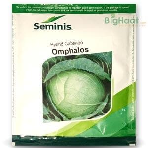 OMPHALOS CABBAGE - BigHaat.com