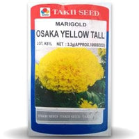 OSAKA YELLOW TALL MARIGOLD - BigHaat.com