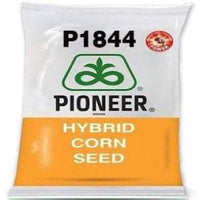 P1844 POWER CORN - BigHaat.com