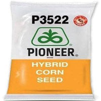 P3522 POWER CORN - BigHaat.com