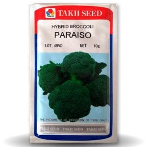 PARAISO BROCCOLI