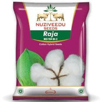 RAJA COTTON (NCS-954 BG II) - BigHaat.com
