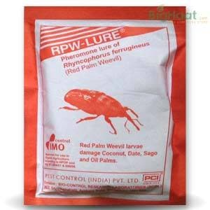 RED PALM WEEVIL LURE | Pest Control India - BigHaat.com