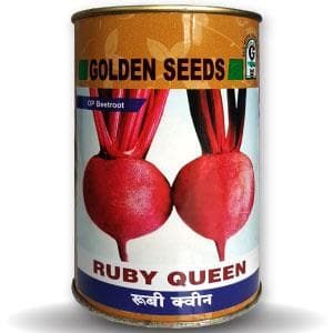 RUBY QUEEN BEETROOT (OP) - BigHaat.com