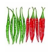 VENUS CHILLI - BigHaat.com