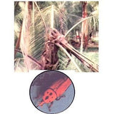 COCO - TRAPP | Trap Red Palm Weevil and Rhinoceros Beetle - BigHaat.com
