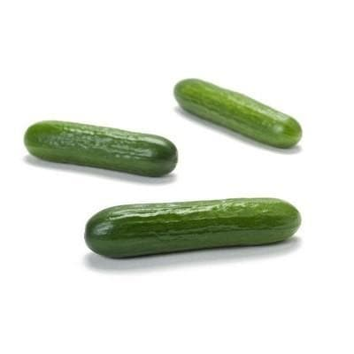 SUNSTAR RZ F1 CUCUMBER - BigHaat.com