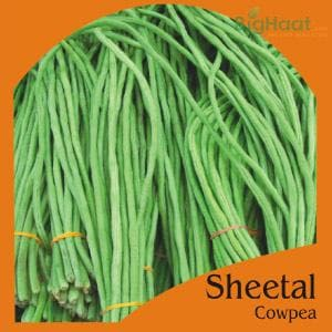 SHEETAL COWPEA-POLE (GREEN) (OP) - BigHaat.com