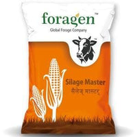 SILAGE MASTER ® 70 (70 DAYS SILAGE CORN SEEDS) - BigHaat.com