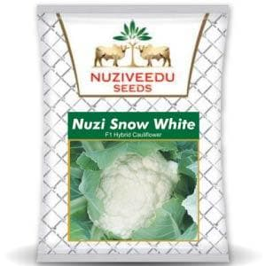 SNOW WHITE CAULIFLOWER - BigHaat.com