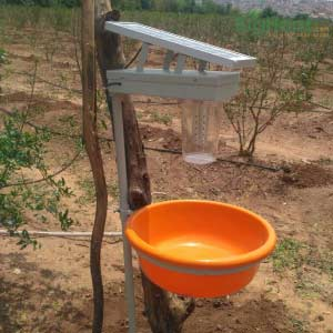 SOLAR TRAP - BigHaat.com