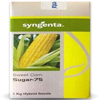 SUGAR 75 SWEET CORN - BigHaat.com