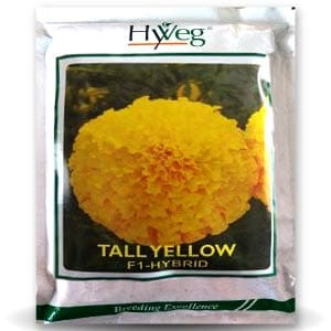 TALL YELLOW MARIGOLD - BigHaat.com