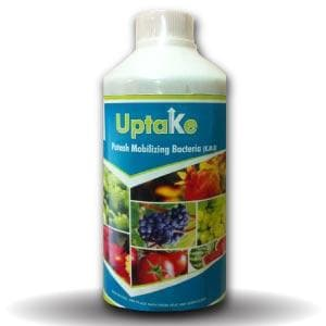 UPTAKE BIO FERTILIZER | Potash Mobilizing Bacteria