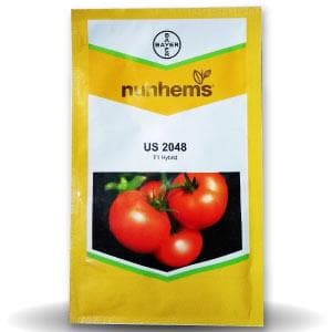 US 2048 TOMATO - BigHaat.com