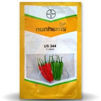 US 344 CHILLI - BigHaat.com