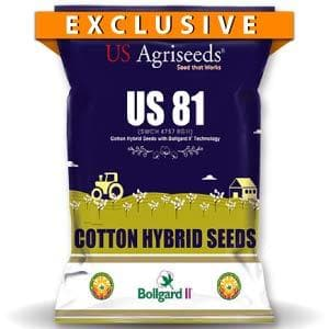 US 81 COTTON (SWCH 4757 BGII)
