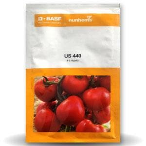 US 440 TOMATO - BigHaat.com