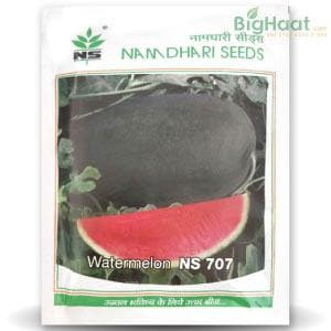 NS 707 WATERMELON - BigHaat.com