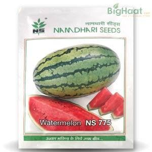NS 775 WATERMELON